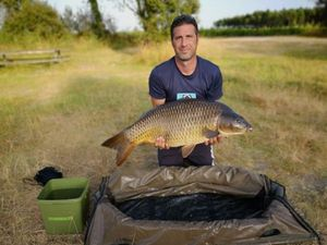 Common Carp — Guillaume  POMMIER