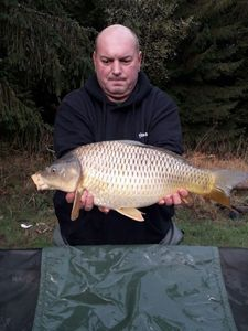 Common Carp — Bertrand Thibaud