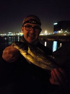 European Bass — David Lahoz