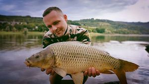 Common Carp — Arnaud  MORLET