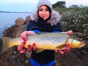 Brown Trout — Charlie Astier
