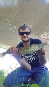 Northern Pike — Pierre Texier