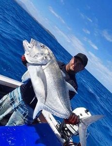Giant Trevally (GT) — Dylan Eguelmy Dvs