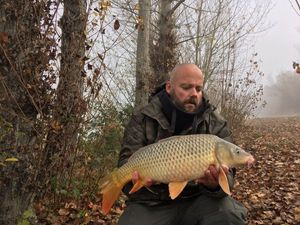 Common Carp — Manu Carpe