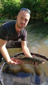 Brook Trout — Loic Bardyn