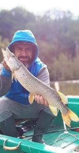 Northern Pike — Vincent Sarli