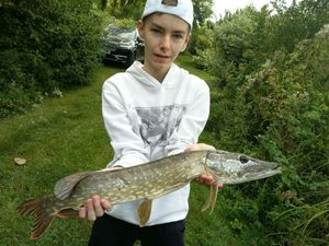 Northern Pike — Loïc Dessaint