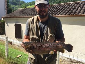 Brown Trout — Nicoco Tortul