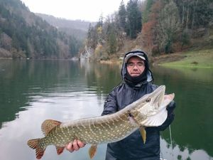 Northern Pike — Jean-Leandre Montero