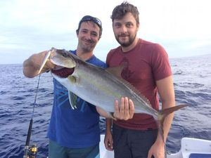 Southern Yellowtail — Guillaume Borie