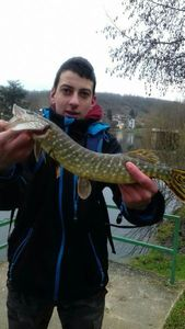 Northern Pike — Yohan Volonzac