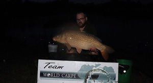 Common Carp — Mo Technologik
