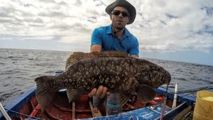 Gag Grouper — Romain Mtn