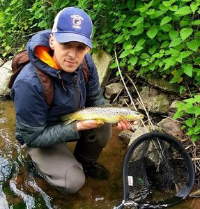 Brown Trout — Nicola Fisherman
