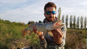 Northern Pike — Manu Mrtn