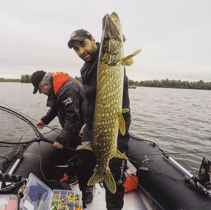 Northern Pike — Yohan Fishing