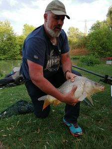 Common Carp — christ greg