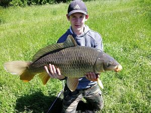 Common Carp — Hugo Grosjean