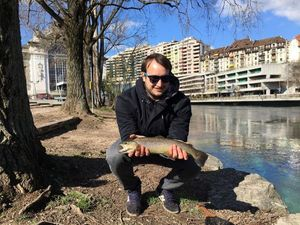 Brown Trout — Paul Vielliard