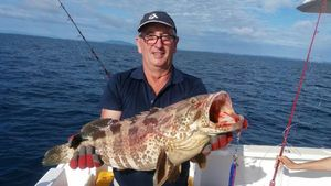 Orange Spotted Grouper — Thierry Gomez