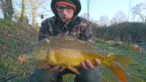 Mirror Carp — Romain Bornua