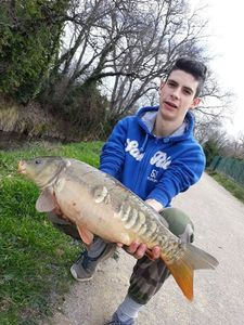 Mirror Carp — Thomas Covo
