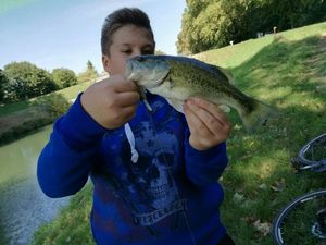 Largemouth Bass — Maxence Goichot