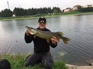 Northern Pike — Max Dem's
