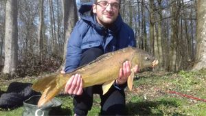 Mirror Carp — Joris Bourland