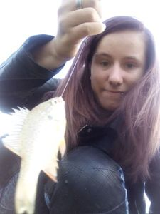 White Perch — Emilie Sdss