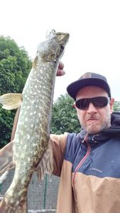 Northern Pike — Benoit Gajek