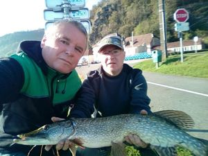 Northern Pike — Sylvain Magris