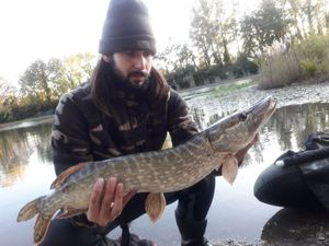 Northern Pike — Anthony Floris
