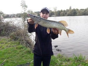 Northern Pike — LEBAS MAXIME