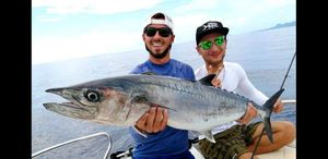 Spanish Mackerel — Mathieu Dauchez