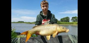 Common Carp — maxou lbs