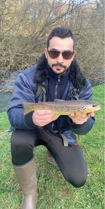 Common Trout — Joao Cal