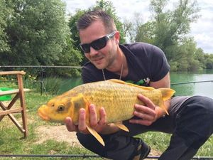 Common Carp — Steven Regnier
