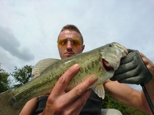 Largemouth Bass — Vic Tor