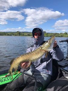 Northern Pike — Anthony Osr