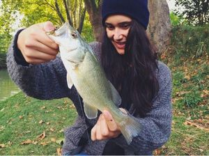 Largemouth Bass — Laurie Clauzade