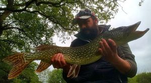Northern Pike — Thibault  Laurent