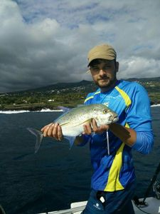 Bluefin Trevally — Guillaume Borie