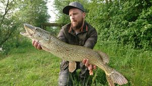 Northern Pike — Pascal Deconne