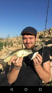 Largemouth Bass — Gabriel Sanchez Holtom
