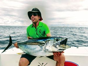 Yellowfin Tuna — Romain Mtn