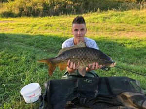 Common Carp — Cédric Decobecq