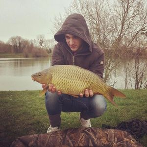 Common Carp — Axel Cadiot