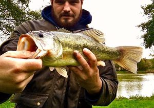 Largemouth Bass — Adrien Aliphat
