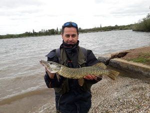 Northern Pike — William Abrazian